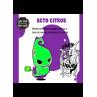 Ecto Citrus